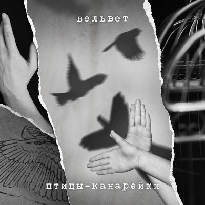 Вельвет Птицы-канарейки обложка альбома